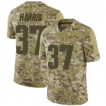 Youth Nike New England Patriots Damien Harris Camo 2018 Salute to Service Jersey - Limited